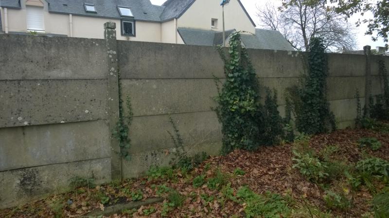 O faire du parkour quand on d bute for Apprendre a peindre un mur